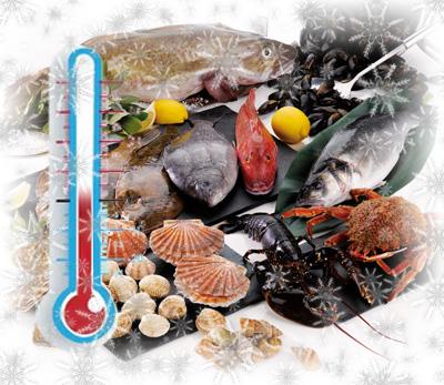 Conservation poisson frais pêché