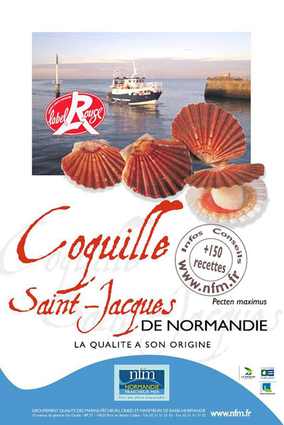 Coquille Saint Jacques Normandie Label Rouge Affiche
