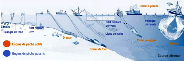 Engins de pêche