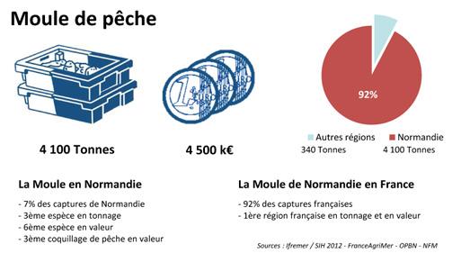 Calendrier Saison Des Moules.La Peche En Normandie
