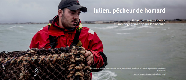 Homard MSC Julien