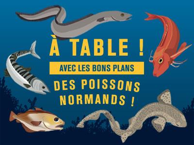 Calendrier Saison Des Moules.Saisonnalite Des Produits De La Peche De Normandie