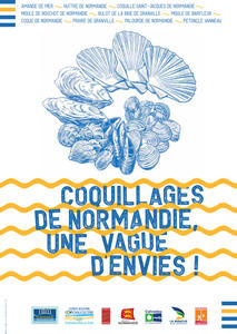 Coquillages de Normandie, une vague d'envies !